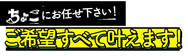 札幌ちょこにお任せ下さい!ご希望すべて叶えます!